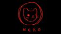 Neko Trust launches new professional development programme