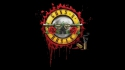 Guns N Roses fan